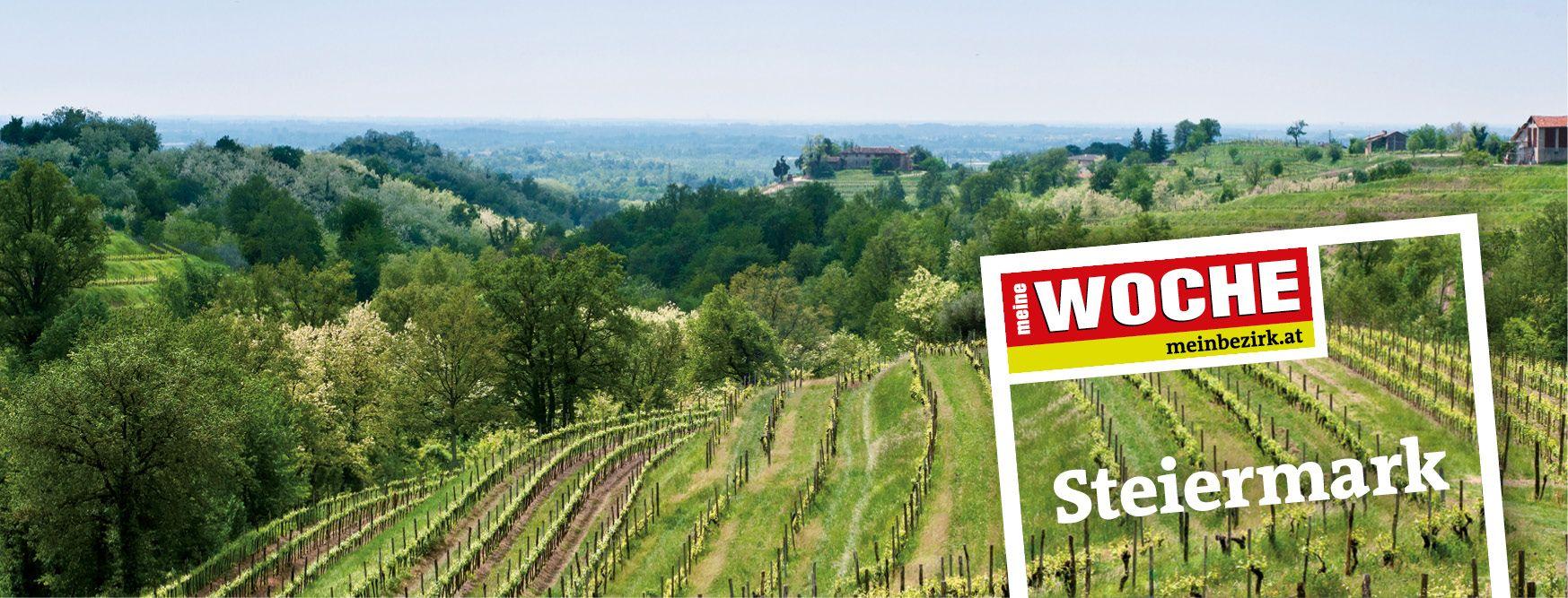 meine WOCHE Steiermark: Tarif, Kontakt, E-Paper, meinbezirk.at, Mediadaten, Streuliste, Beilagen, Technische Daten