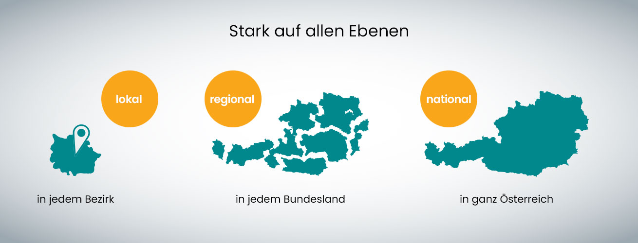 Regionalmedien Austria (RMA): Struktur (lokal, regional, national)